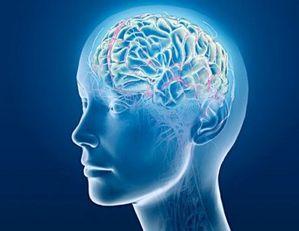 dz0zMDAmaD0yMzE=_src_1808-szpiegujac_mozg_porady_demencja_Alzheimer